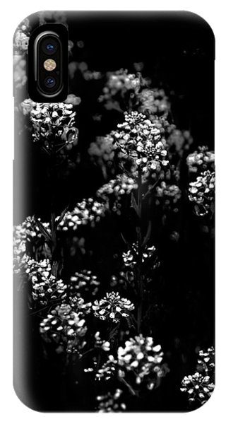 Backyard Flowers In Black And White 33 IPhone Case