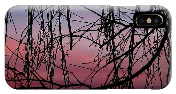 Backyard Sunset IPhone Case