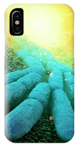 Micro-organisms iPhone Case - Bacteria by Animate4.com/science Photo Libary