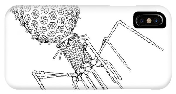Virus iPhone Case - Bacteriophage T4 by Russell Kightley