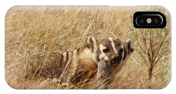 Badger With Prey IPhone Case
