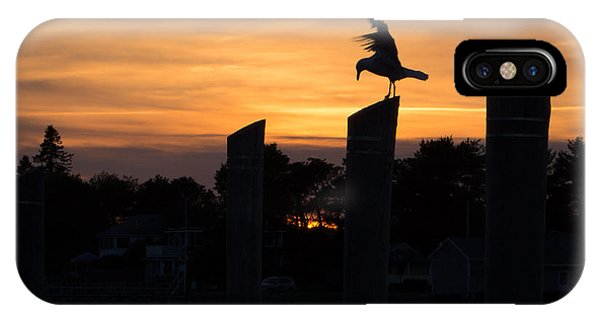 Balance - A Seagull Sunset Silhouette IPhone Case