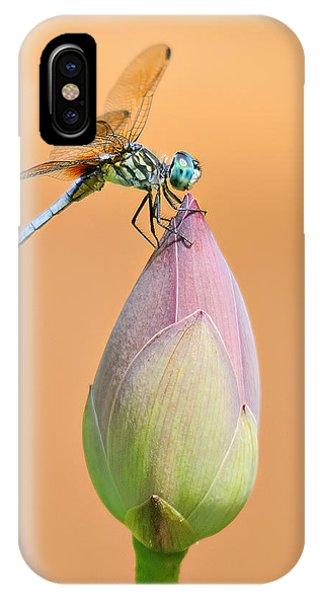 Balance Of Nature IPhone Case