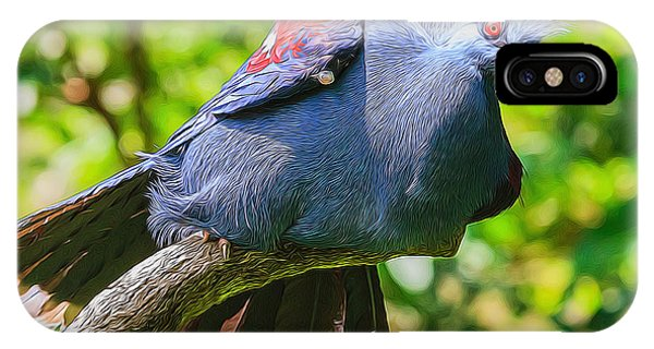 Balanced Pigeon IPhone Case