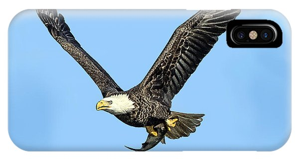 Bald Eagle Flying Holding Freshly Caught Fish IPhone Case
