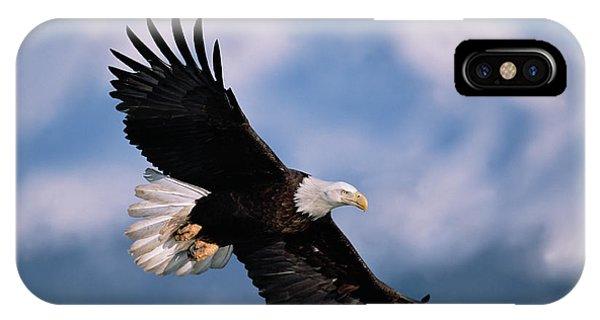 Mp iPhone Case - Bald Eagle Flying Kachemak Bay by Yva Momatiuk John Eastcott