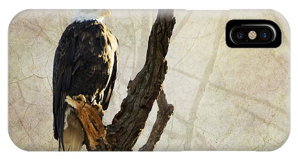 Bald Eagle Keeping Watch In Illinois IPhone Case