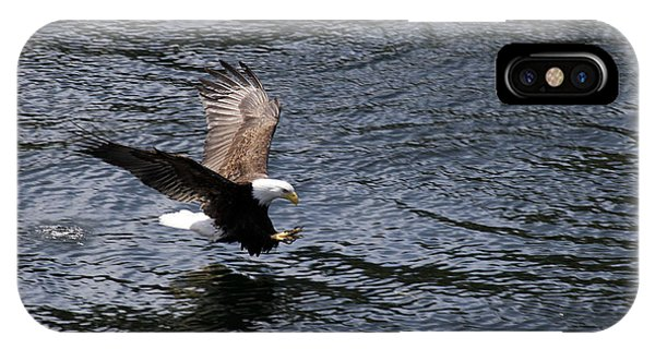 Bald Eagle Landing A Free Lunch IPhone Case