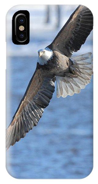 Bald Eagle Turn IPhone Case