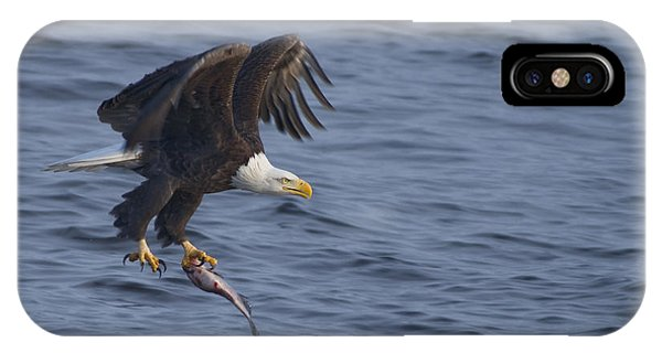 Bald Eagle With A Fish IPhone Case