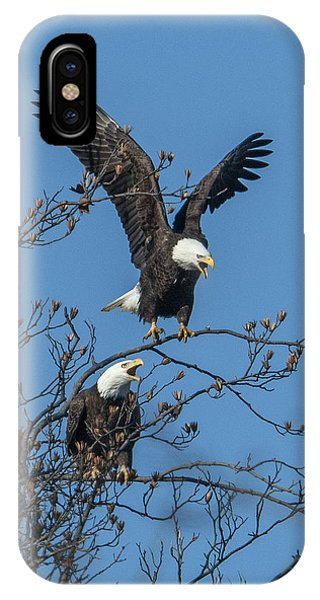 Bald Eagles Screaming Drb169 IPhone Case