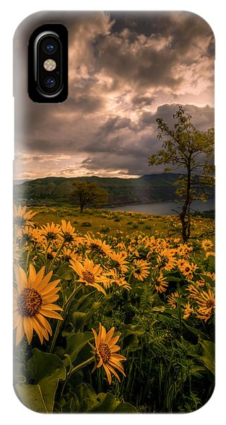 Balsamroot Heaven IPhone Case