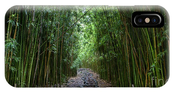 Bamboo Forest Trail Hana Maui IPhone Case