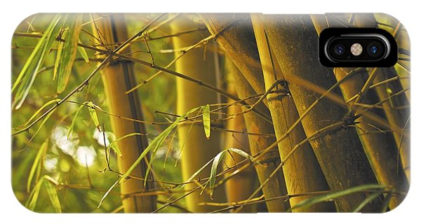 Bamboo Gold IPhone Case