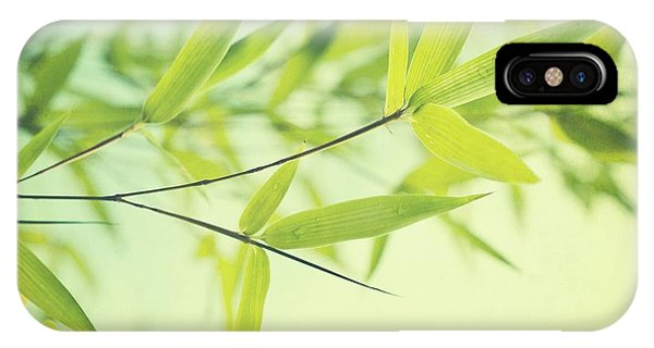 Bamboo In The Sun IPhone Case