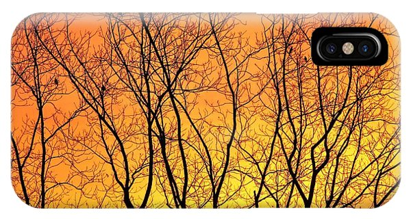 Bare Winter Sunrise  IPhone Case
