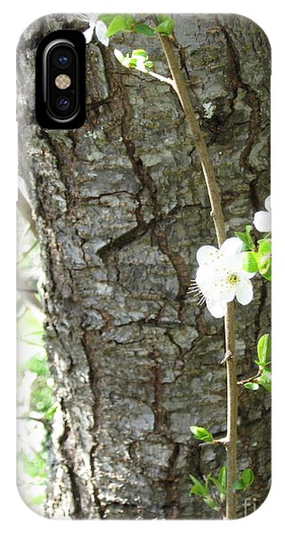 Bark And Blossoms IPhone Case