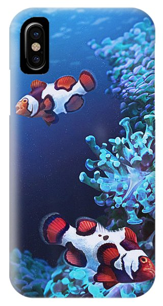 Reef iPhone Case - Barking Picassos by Javier Lazo