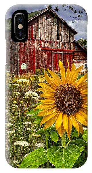 Cloud iPhone Case - Barn Meadow Flowers by Debra and Dave Vanderlaan