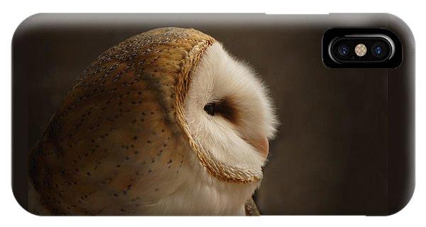 Barn Owl 3 IPhone Case