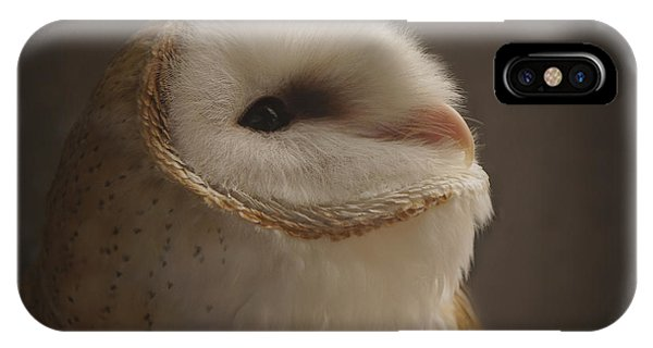 Barn Owl 4 IPhone Case