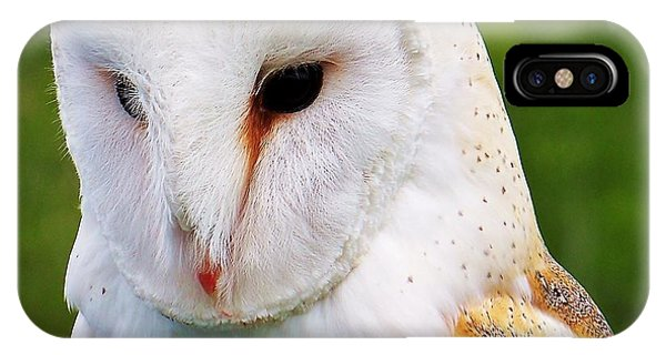Barn Owl... IPhone Case