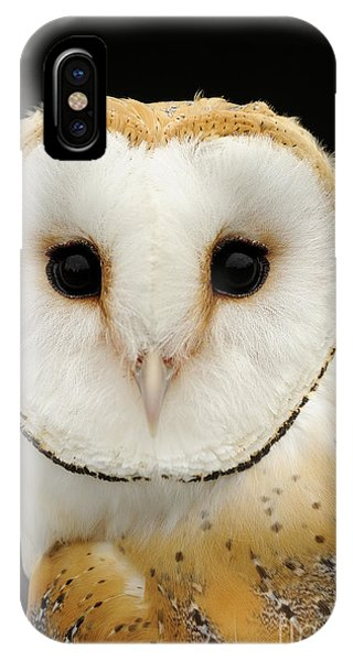 Disc iPhone Case - Barn Owl by Malcolm Schuyl FLPA