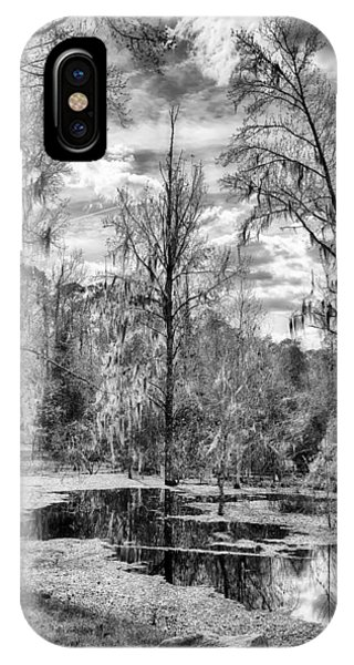 IPhone Case featuring the photograph Barr Hammock Preserve  by Howard Salmon