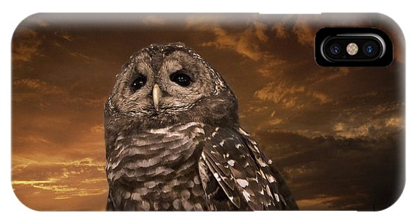 Barred Owl  IPhone Case