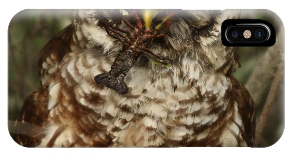 Barred Owl Eating Crawfish Phone Case by Kelly Morvant
