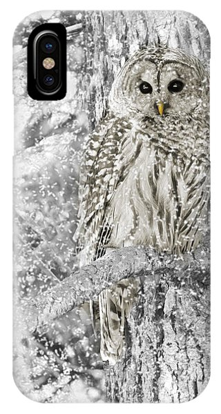 Bar iPhone Case - Barred Owl Snowy Day In The Forest by Jennie Marie Schell