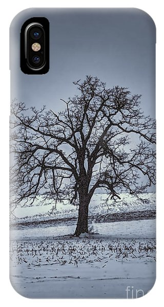 IPhone Case featuring the photograph Barren Winter Scene With Tree by Dan Friend