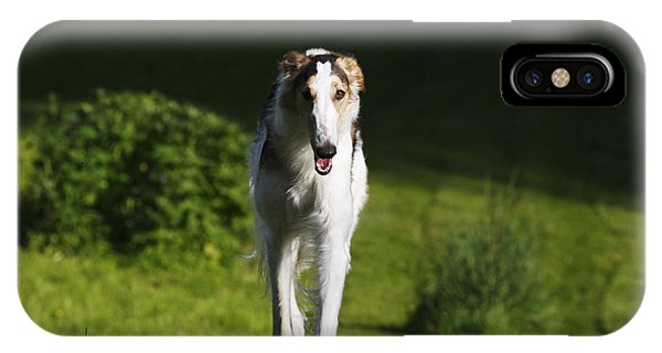 Barzoi Hound Running In A Woolf Like Posture IPhone Case
