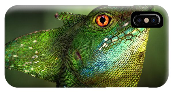 Dragon iPhone Case - Basilisca Verde by Jimmy Hoffman