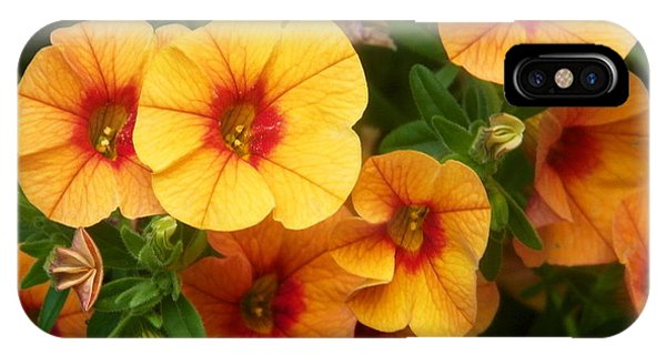 Analogous Color iPhone Case - Basket Flowers by Dale Jackson