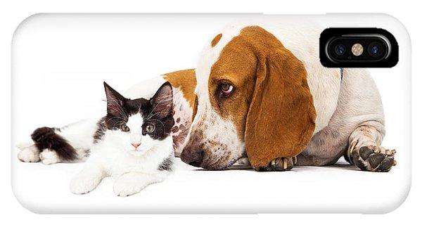 Basset Hound Dog And Kitten IPhone Case