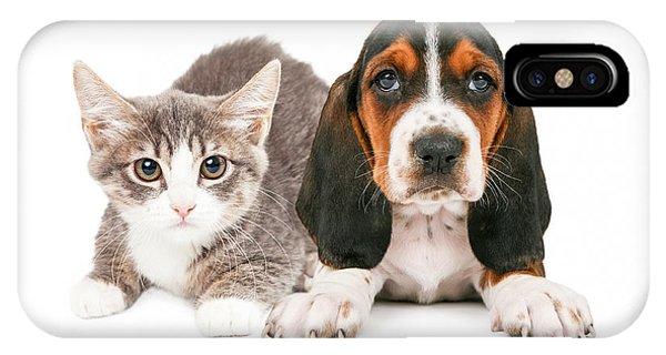 Basset Hound Puppy And Kitten IPhone Case