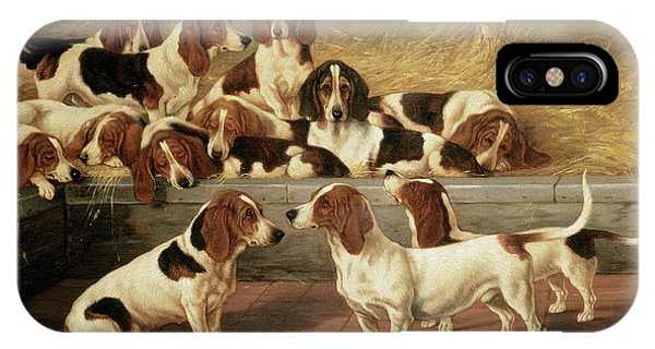 Basset Hounds In A Kennel IPhone Case