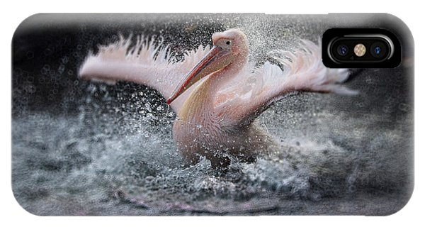 Pelican iPhone Case - Bathing Fun ..... by Antje Wenner-braun