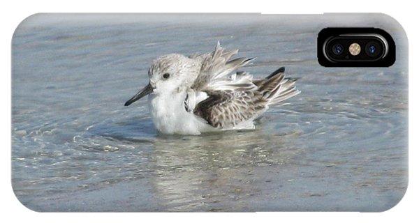 Beach Bird Bath 4 IPhone Case