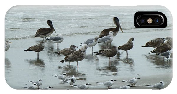 Beach Birds IPhone Case