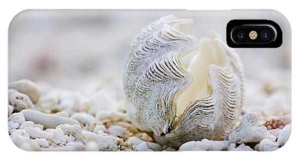 South Pacific Ocean iPhone Case - Beach Clam by Sean Davey