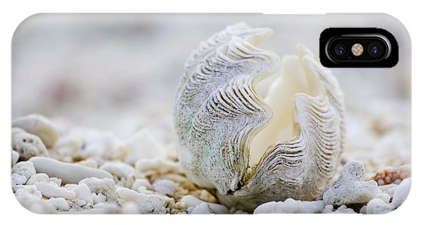 Beach Clam IPhone Case