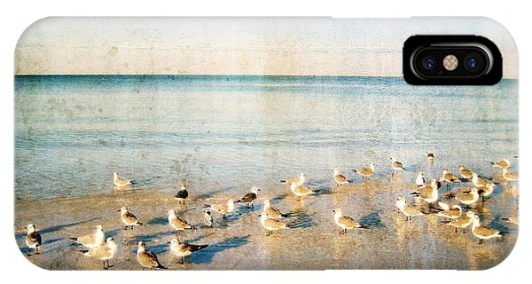 Beach Combers - Seagull Art By Sharon Cummings IPhone Case