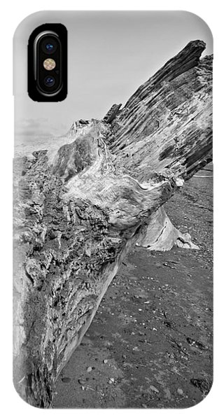 Beach Driftwood View IPhone Case