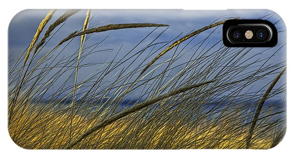 Beach Grass On A Sand Dune At Glen Arbor Michigan IPhone Case