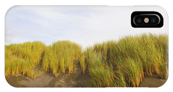 Oregon Sand Dunes iPhone Case - Beach Grass On Sand, Pistol River State by Panoramic Images