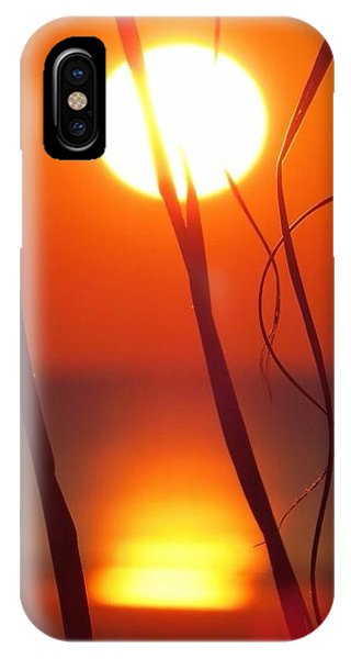 Beach Grass Sunrise IPhone Case