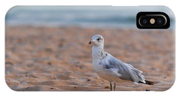 Beach Patrol IPhone Case