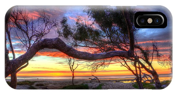 Beach Tree Sunset View IPhone Case